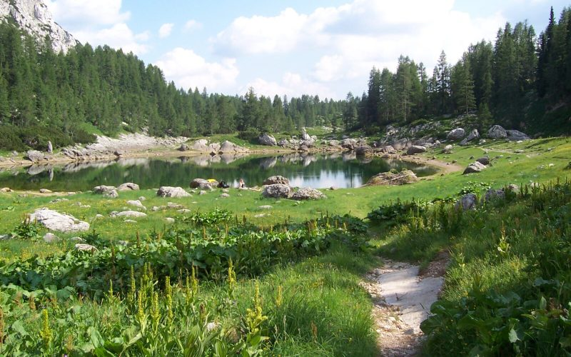 Active Holiday in Slovenia