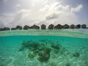 Centara Rasfushi