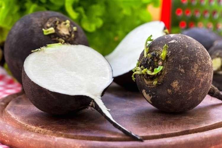 Črna redkev prinaša moč za krepko zdravje