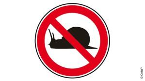 escargot interdits