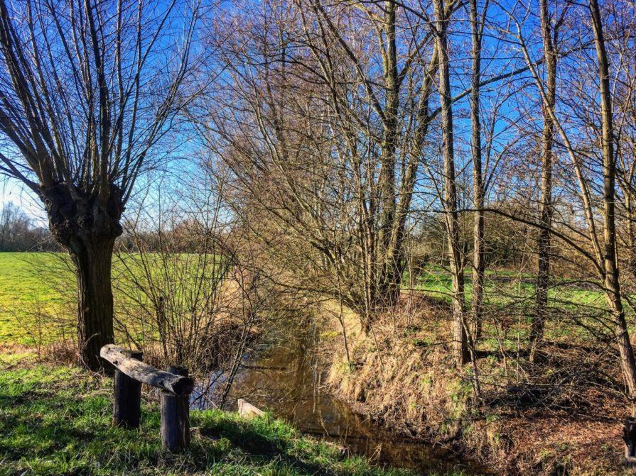 Hergnies Grand Marais Slow Tourisme à Valenciennes Nature