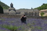 Abbaye de Senanque. Lavandă. Foto: ©Slowaholic