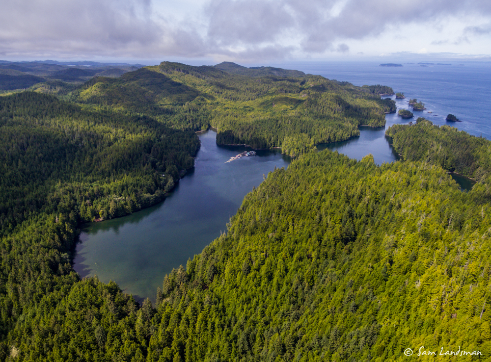 Nearby Clam Cove from the air