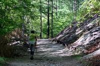 新緑の西沢渓谷