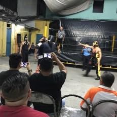lucha libre 3