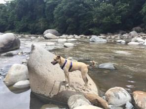 river camp exploration