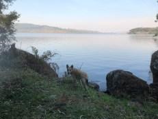 camping lake nica lakeside
