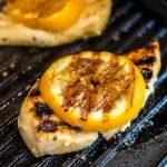Mustard Citrus Chicken