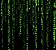 matrix-en-bolsa