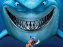 tiburon-acechando