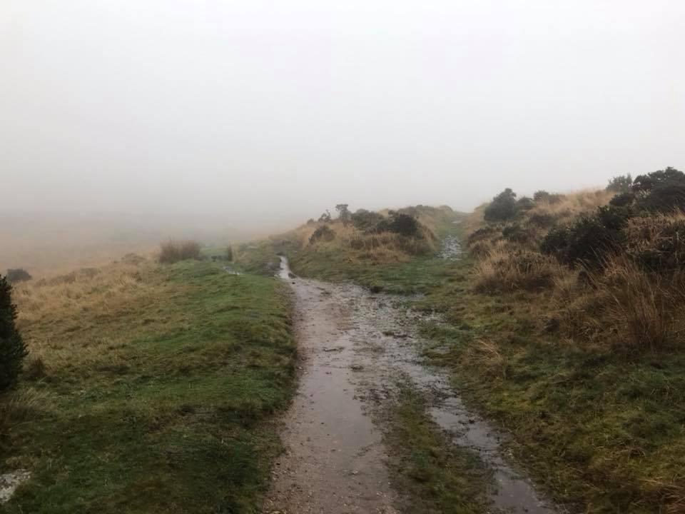 Foggy Trail Dartmoor