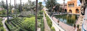 Magnificent garden of the Real Alcazar de Seville with orange building