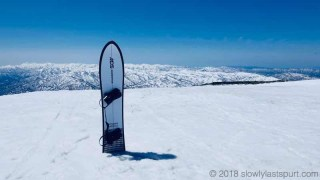 MOSS SNOWSTICK U4