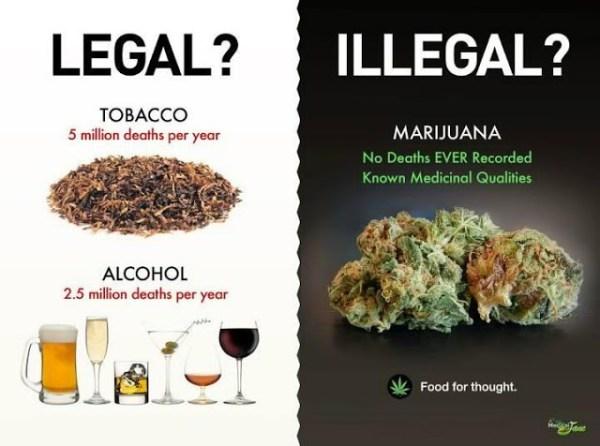 합법과 불법의 경계. 담배는 이미 불법화할 수 없기 때문에 묵인해야 하는 걸까.