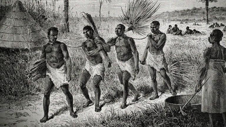 서아프리카에서 끌려온 노예들