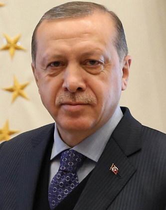 터키판 '개발독재', 레제프 타이이프 에르도안 (2017)