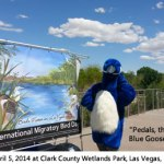 Photo: International Migratory Bird Day banner and Pedals the Blue Goose mascot at Clark County Wetlands Park, Las Vegas, Nevada