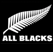 All Black rugby team follow Kaizen principles. In day trading financial news rules.