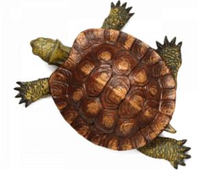 tortoise logo