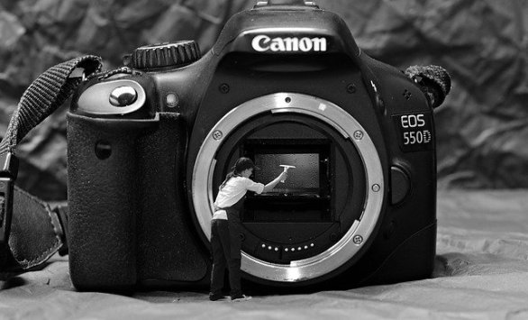 tips to make your photography look professional - Tips To Make Your Photography Look Professional