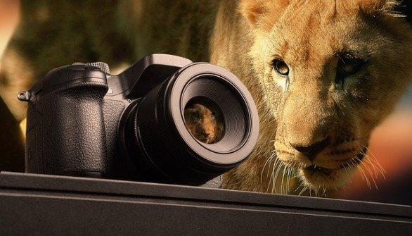 gain a better understanding of the photography world 1 - Gain A Better Understanding Of The Photography World