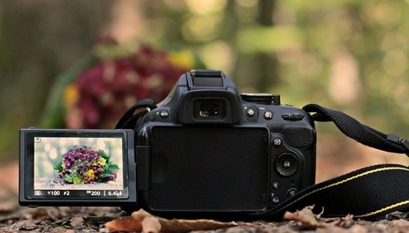 a few basics about photography that you can master easily - A Few Basics About Photography That You Can Master Easily