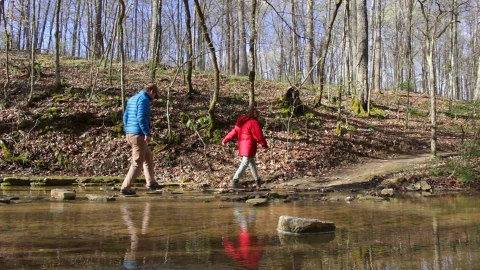 Crossing Turkey Run Creek, on the Paw Paw Trail