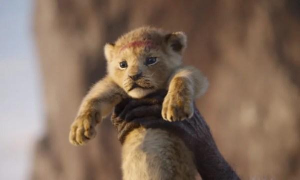 lion king # 51