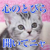 猫の語り画像