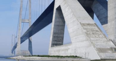 Storebæltsbroen som fiskeområde