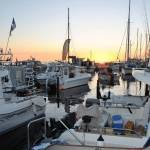 Grenaa Cup i artsfiskeri