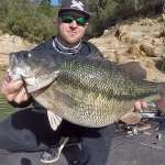 Fik du set verdensrekorden i Spotted Bass (video)?