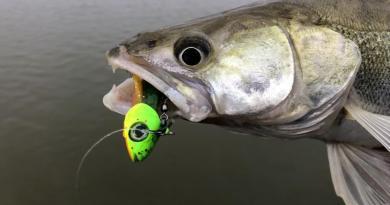 Når det skal være nemt: Ready to fish!