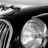 Car Lamps & Indicators