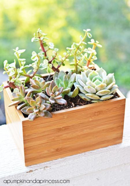 Ikea-Hack-Succulent-Planter