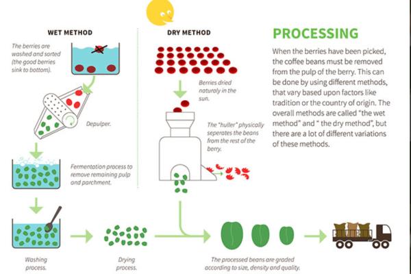Fermentering – Hvad Er Der Nu Det Er?