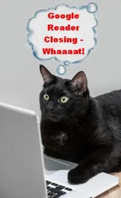 Google Reader closing - cat appalled
