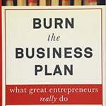 Burn the Business Plan! is a Book about Turning Entrepreneurial Vision Into Practical Solution