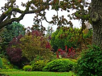 abkhazi gardens