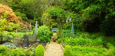 Even a potager with colourful obelisks to support beans.