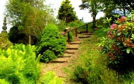 Gentler steps