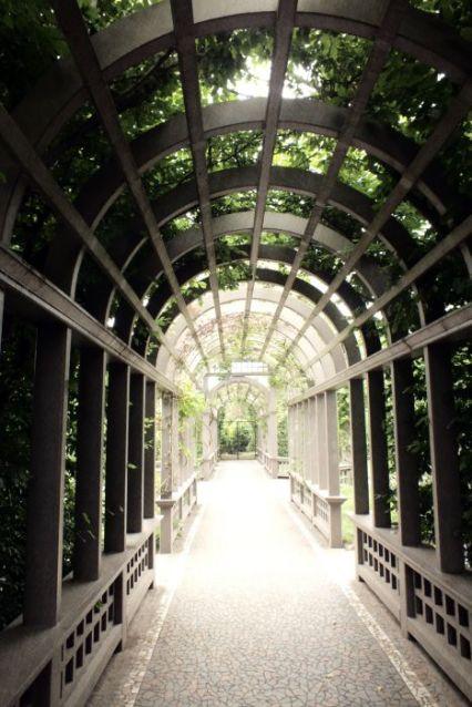 Trellis Entrance