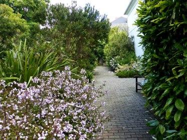 Pathway through the garden