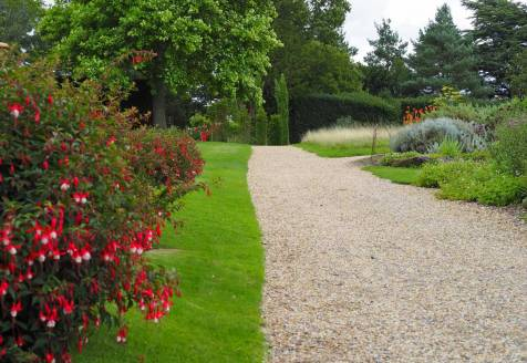 Fuchsia lined path