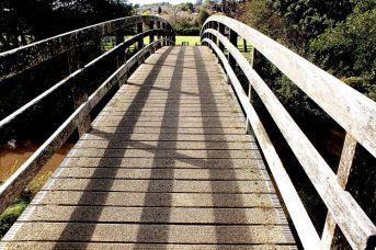 shadows (3)