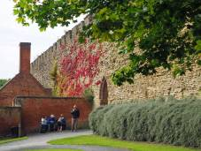 Virginia Creeper turning red on the castle wall (September)