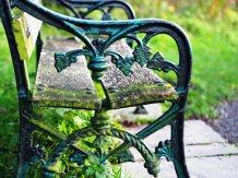 a broken bench (November)
