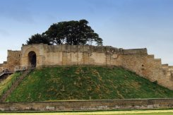 Motte and Bailey - Lucy's Tower