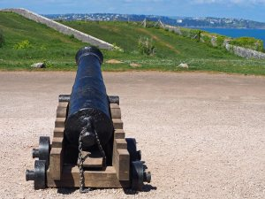 A Napoleonic Cannon