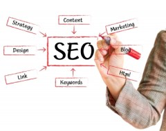 Find an SEO Expert for Your Company